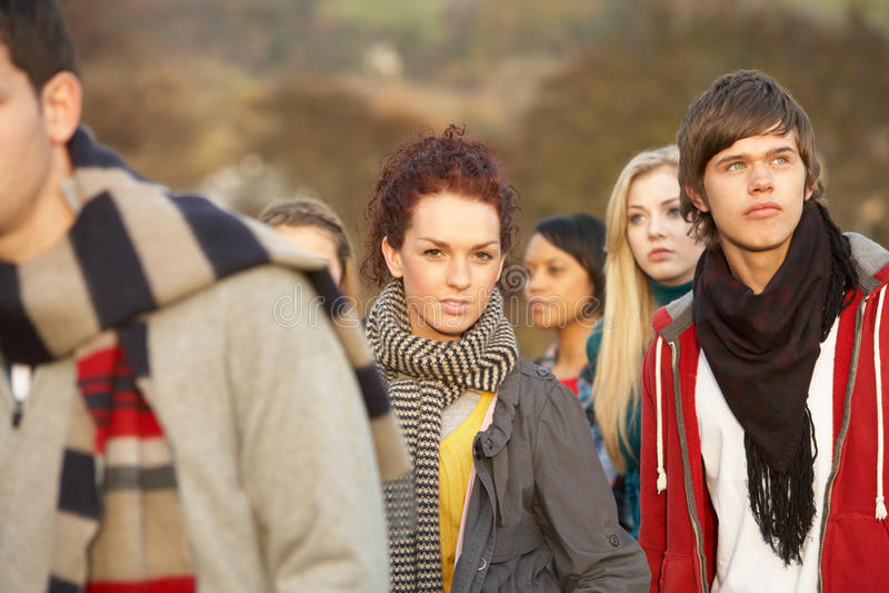 Tiener die door Vrienden wordt omringd royalty-vrije stock foto