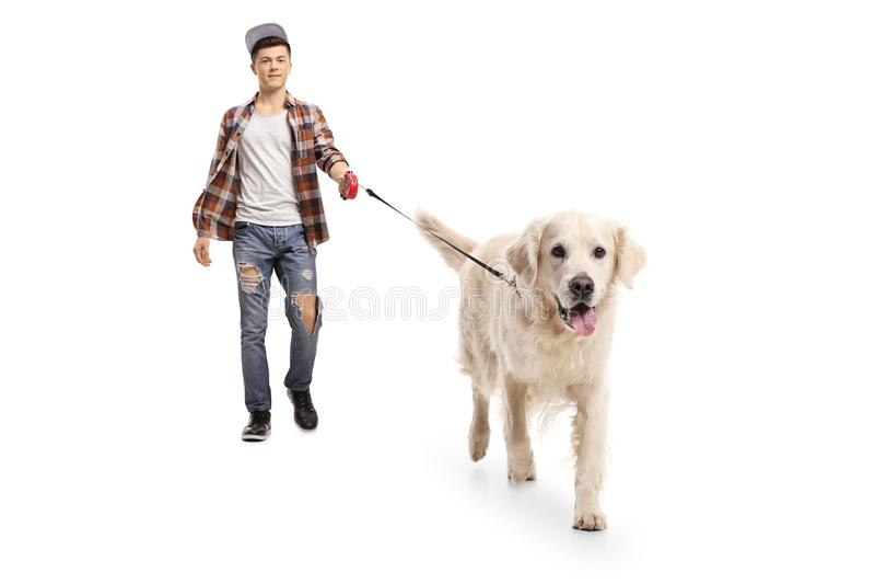 Tiener die hipster een hond loopt stock fotografie