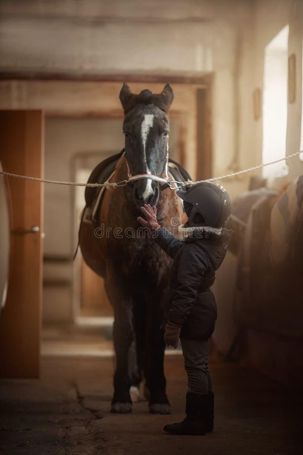 Tiener die zich met paard in een stal bevinden stock foto
