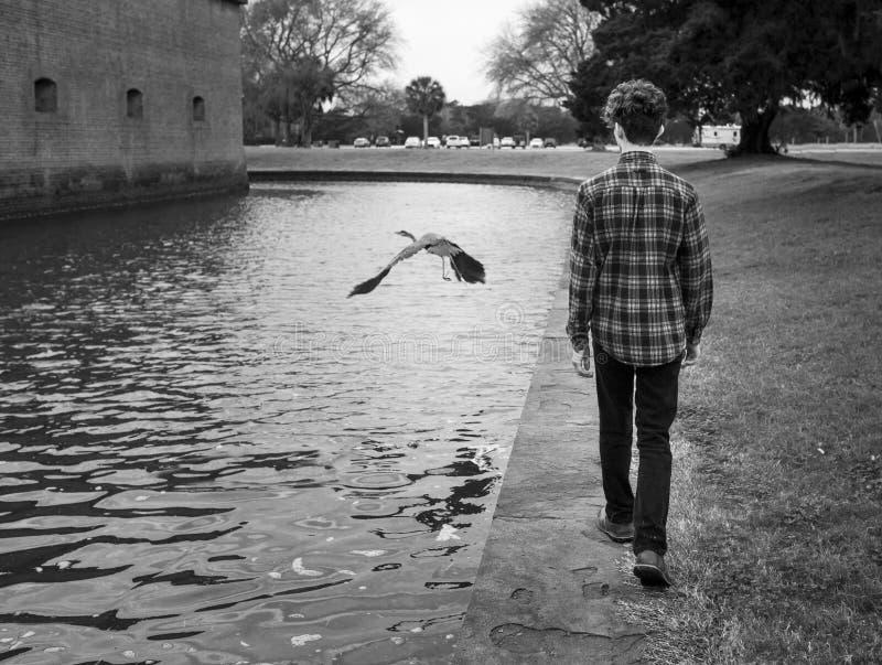 In tiener en vogel stock fotografie