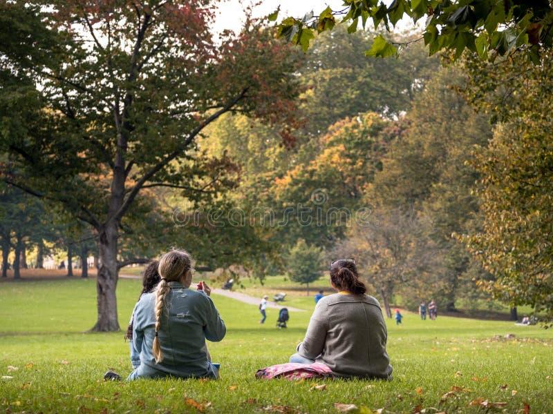 Tiener in het Park stock fotografie