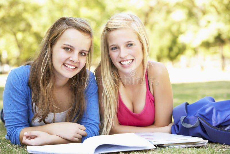 Tieners die in Park bestuderen stock afbeeldingen