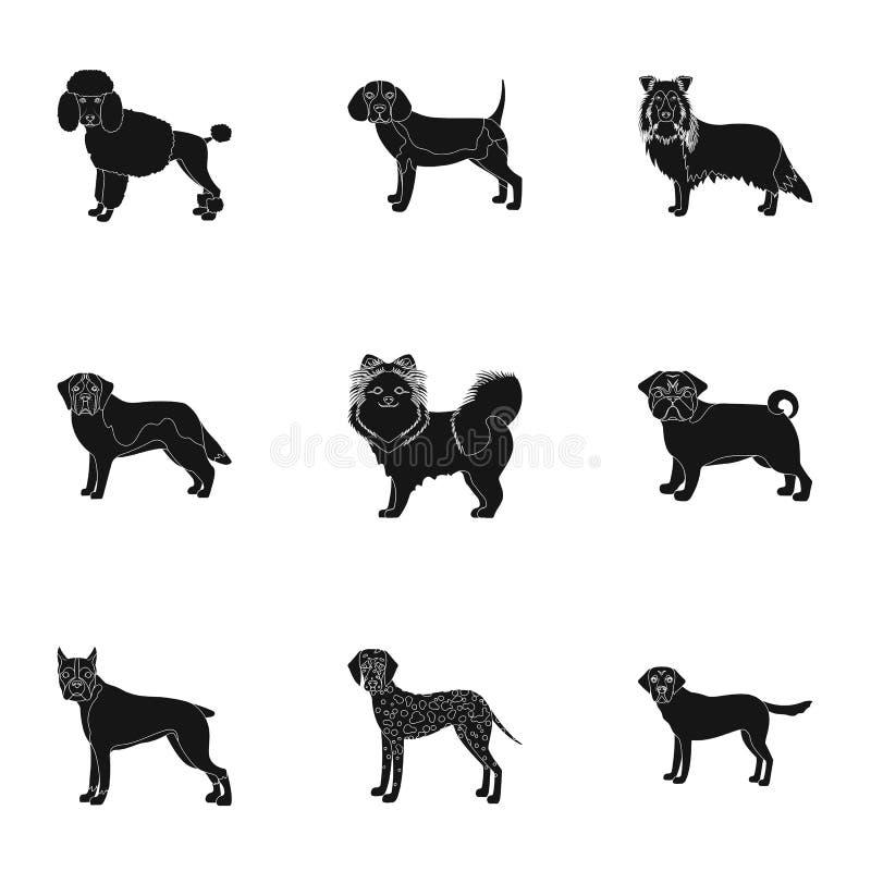 Tier, inländisch, Dachshund und andere Netzikone in der schwarzen Art Dachshund, Schlittenhund, Spürhund, Ikonen in der Satzsamml stock abbildung