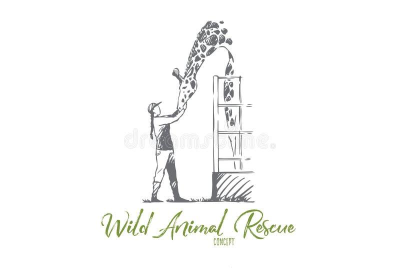 Tier, wild, Giraffe, Rettung, Zookonzept Hand gezeichneter lokalisierter Vektor stock abbildung