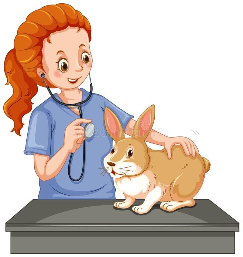 Tierarzt, der wenig Häschen überprüft stock abbildung