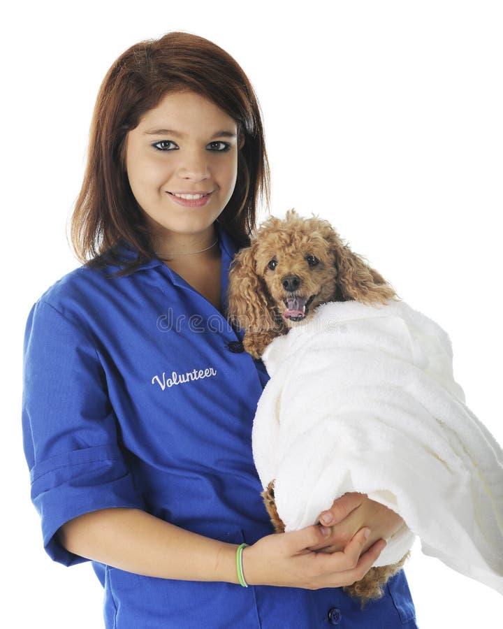 Tierarzt-freiwilliges Porträt stockfotografie