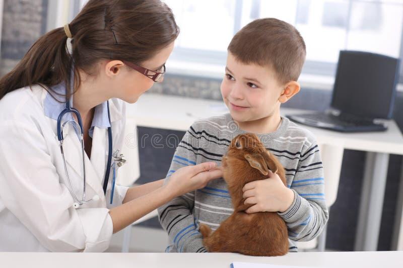 Tierarzt und Kind, die Kaninchenbehandlung behandeln stockbild