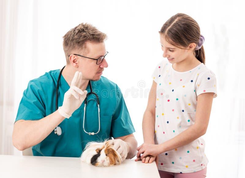 Tierarztdoktorunterricht jugendlich stockfotografie
