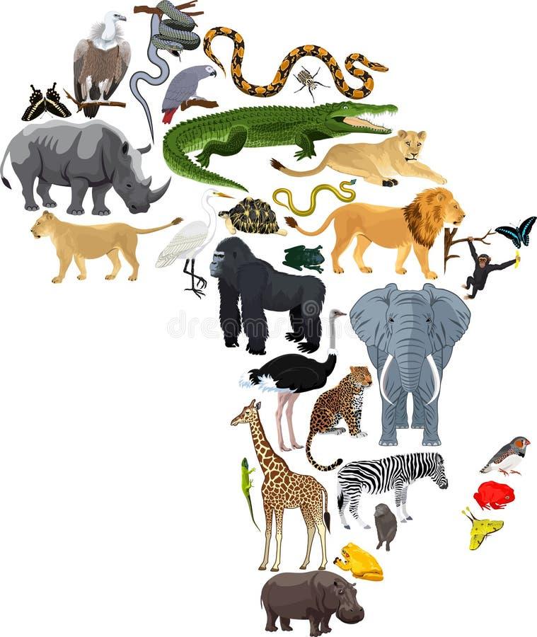 Tiere Afrika - Vektorillustration lokalisiert vektor abbildung