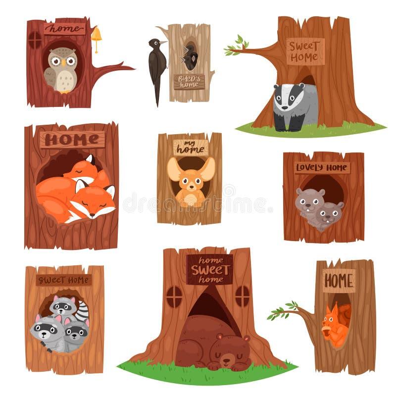 Tiere im animalistic Charakter des hohlen Vektors im Baum höhlten Lochillustrationssatz Vögel Eule oder Vogel auf Treetops aus lizenzfreie abbildung
