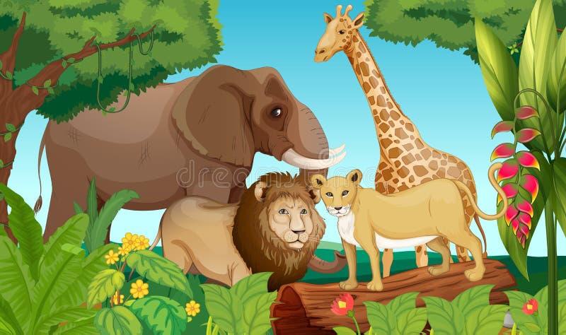 Tiere im Dschungel lizenzfreie abbildung