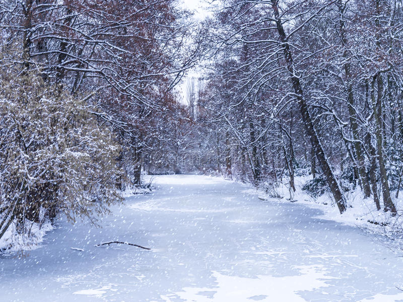Tiergarten в зиме стоковое изображение