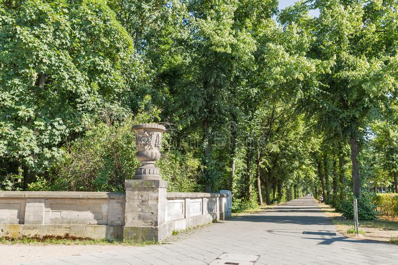 Tiergarten park alley in Berlin, Germany. Summer Tiergarten city park alley in Berlin, Germany royalty free stock image