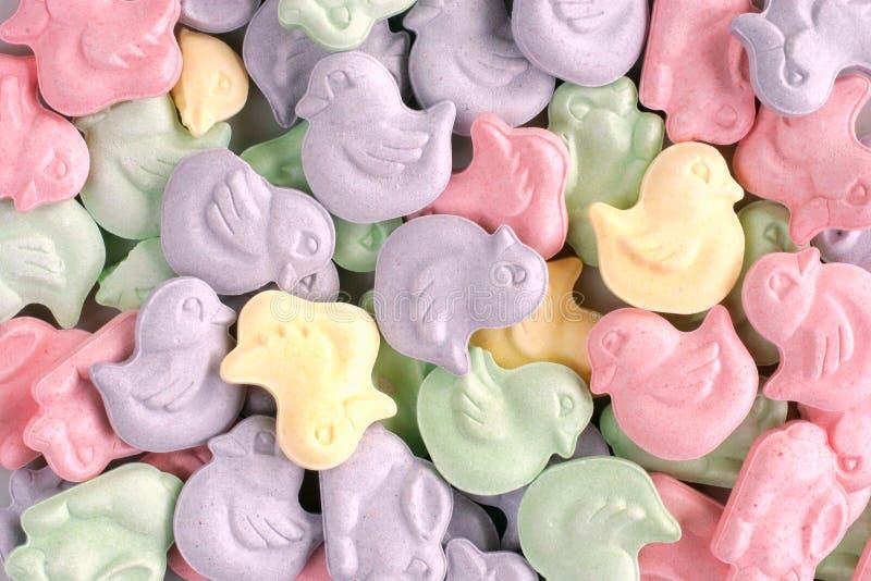 Tierische geformte Ostern-Süßigkeit stockfoto