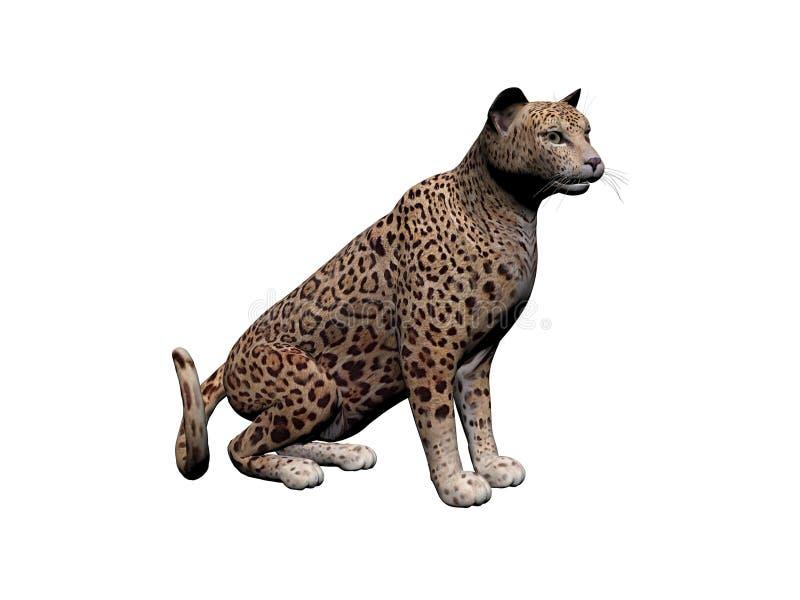 Tierische Vorderansicht Jaguars, lokalisiert auf Weiß, Schatten - Wiedergabe 3d vektor abbildung
