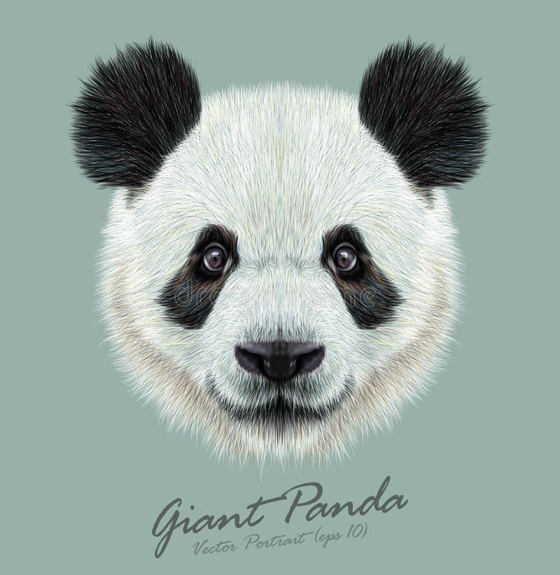 Tierisches nettes Gesicht des Pandas Hauptporträt des asiatischen Bären des Vektors Realistisches Pelzporträt des Bambustieres au stock abbildung