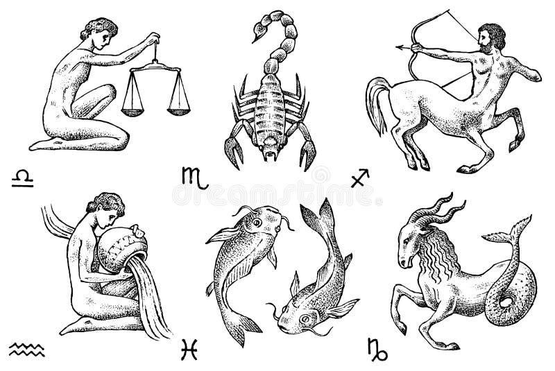Tierkreis-Ikonen Astrologiehoroskop mit Zeichen Kalenderschablone Sammlungsentwurfstiere Klassische Weinleseart vektor abbildung