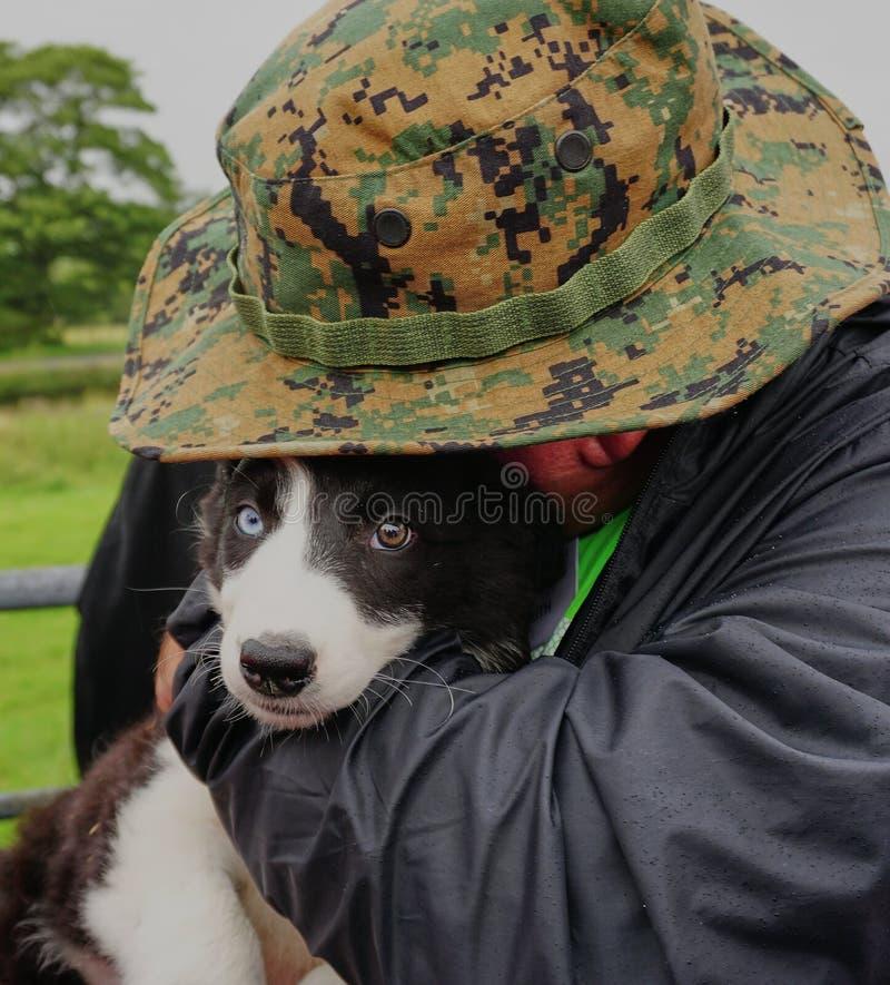 Tierliebhaber umarmt schönen Schäferhund-Welpen - Wales Großbritannien lizenzfreie stockbilder
