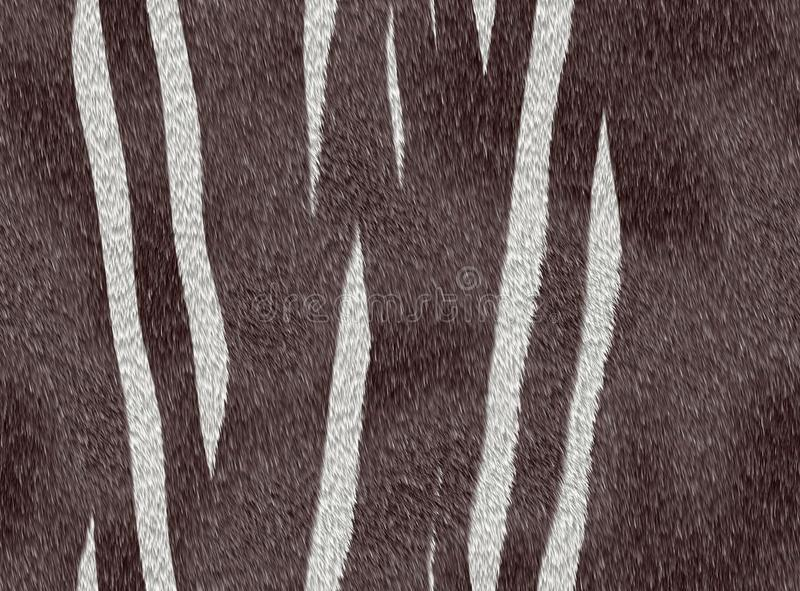 Tierpelzzebra stockbilder