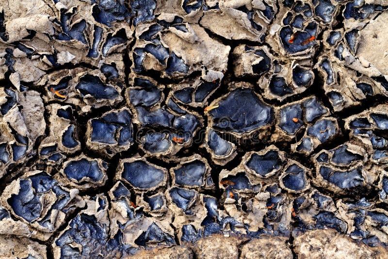 Tierra agrietada de derrames de petróleo imagen de archivo