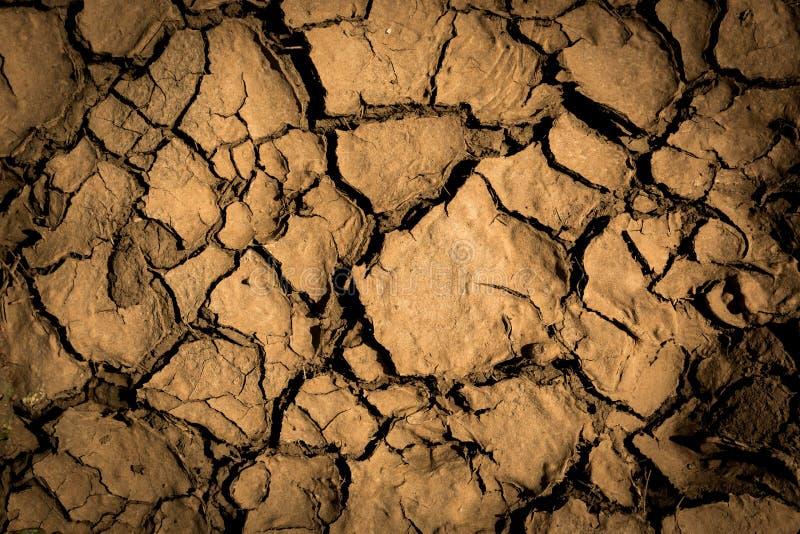 Tierra agrietada seca stock de ilustración
