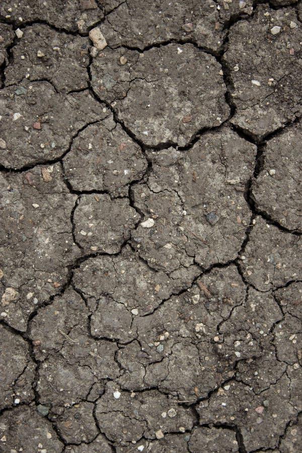 Tierra atormentada  seco de Ñ imagen de archivo