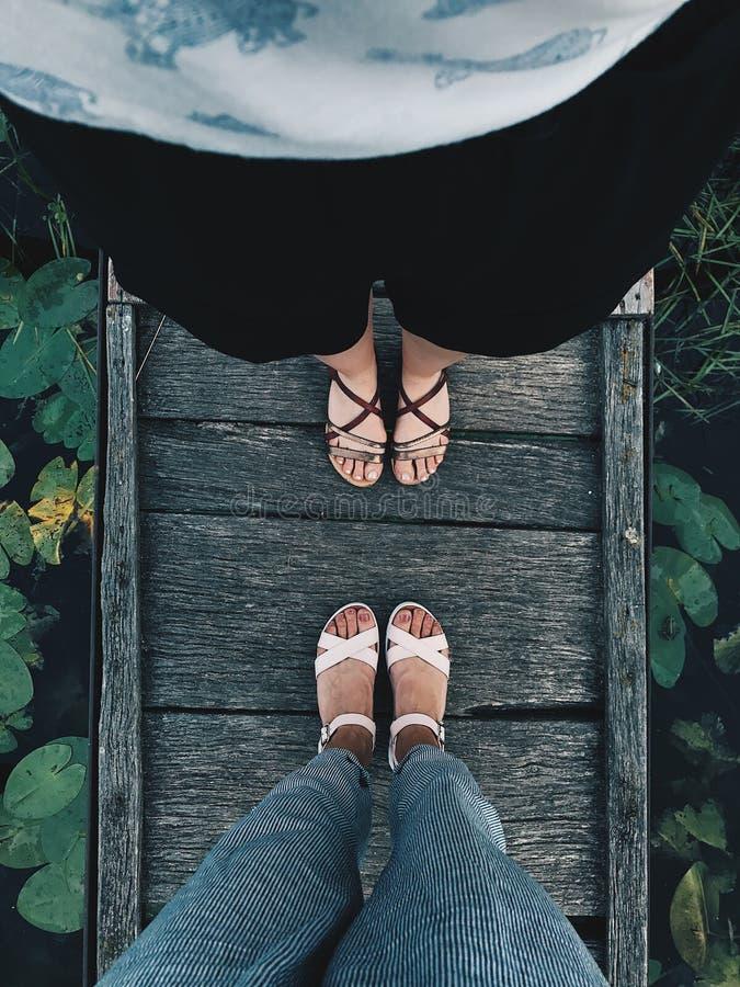 Tierra con las porciones de plantas, helechos, musgo verde enorme Fondo hermoso del piso natural con los pies femeninos y masculi imagen de archivo libre de regalías