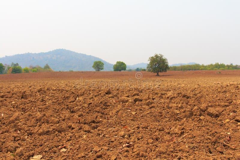 Tierra de la paleta lista para el cultivo, fotografía de archivo