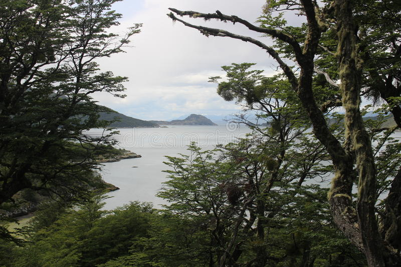 Tierra Del Fuego - paisagem fotografia de stock