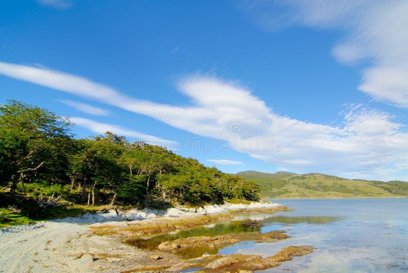 Tierra- del FuegoNationalpark lizenzfreie stockbilder