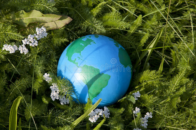 Tierra e hierba verde imágenes de archivo libres de regalías