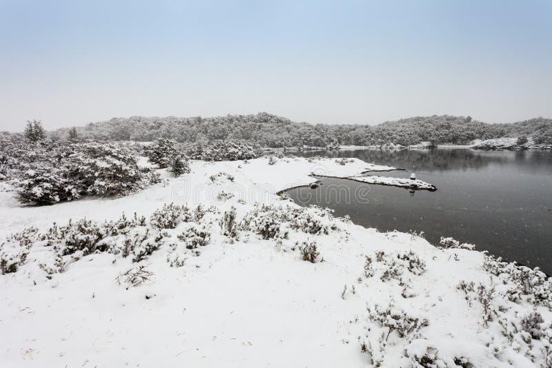 Tierra Fuego park narodowy obraz royalty free