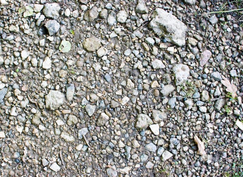 Tierra Pedregosa Imagen de archivo