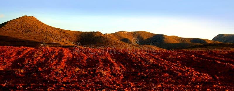 Tierra Roja Imagen de archivo