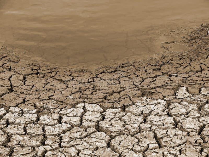 Tierra seca fotos de archivo