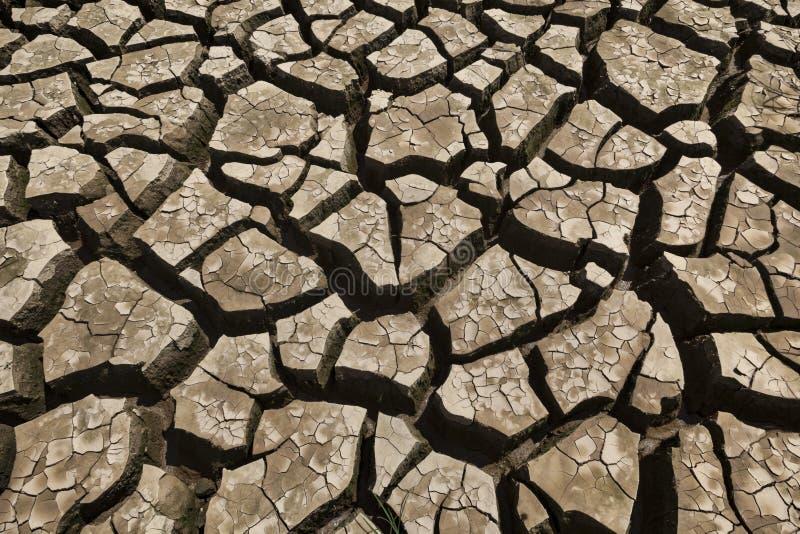 Tierra seca agrietada foto de archivo
