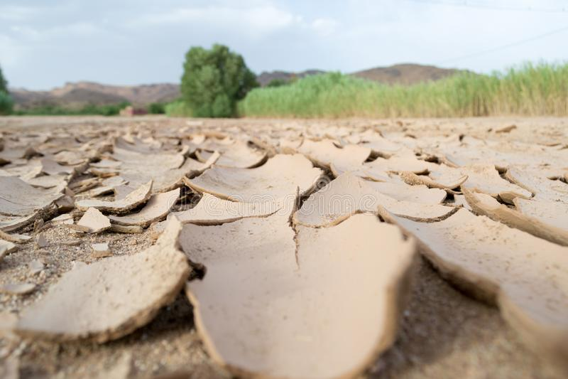 Tierra seca y manivela fotografía de archivo libre de regalías
