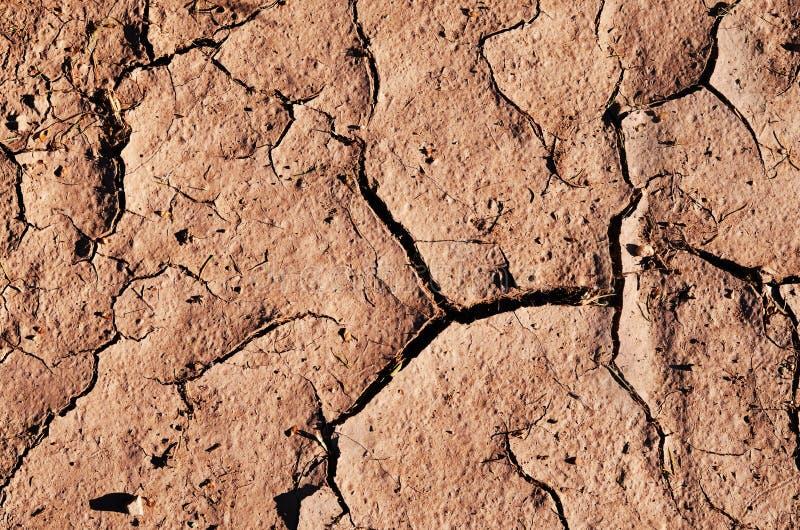 Tierra secada agrietada foto de archivo