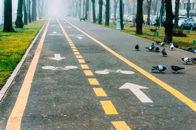 Tierra y acera de la bici en parque fotos de archivo libres de regalías