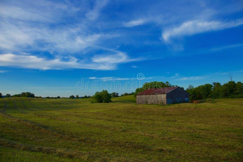Tierras de labrantío americanas con el campo y cielo azul con las nubes blancas fotografía de archivo