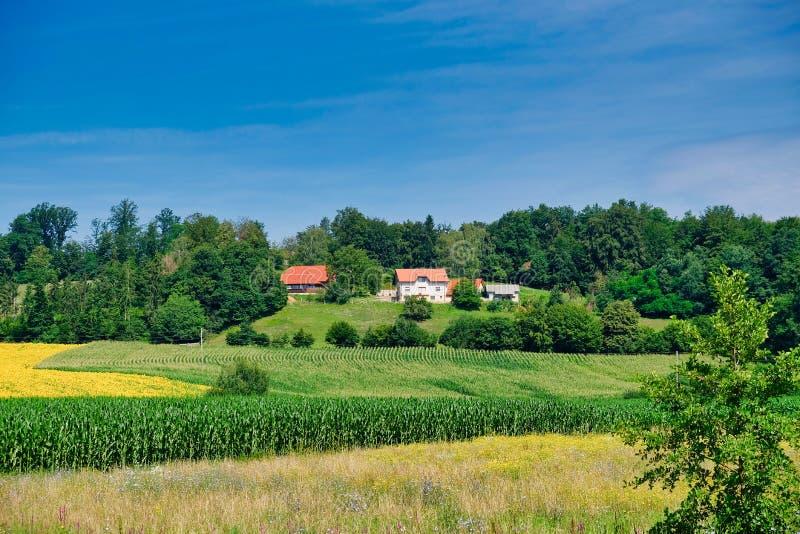 Tierras de labrantío enormes, Eslovenia del este foto de archivo libre de regalías