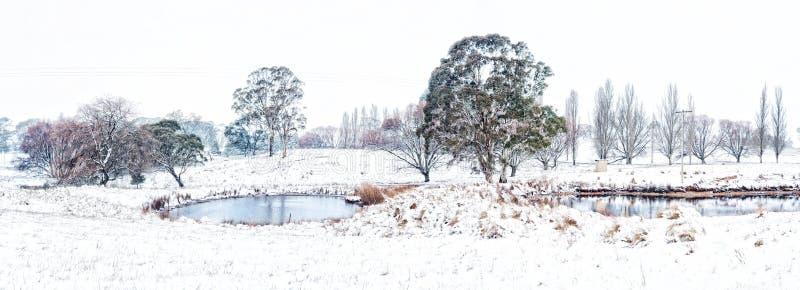 Tierras de labrantío rurales en el país Australia después de caídas frescas de la nieve foto de archivo libre de regalías