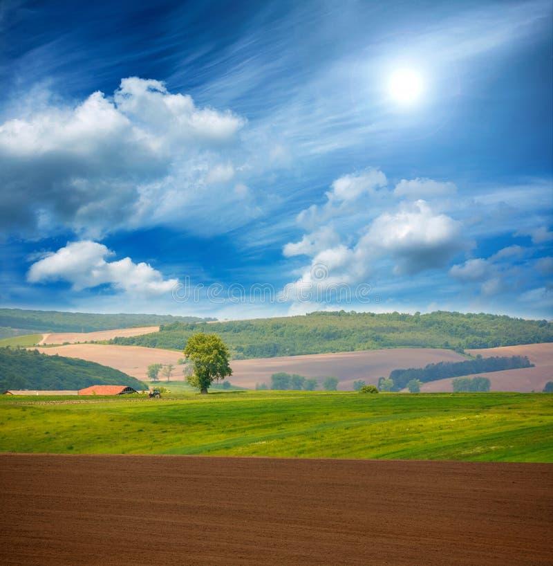 Tierras de labrantío verdes agrícolas aradas secas de la tierra del país en el cielo azul imagenes de archivo