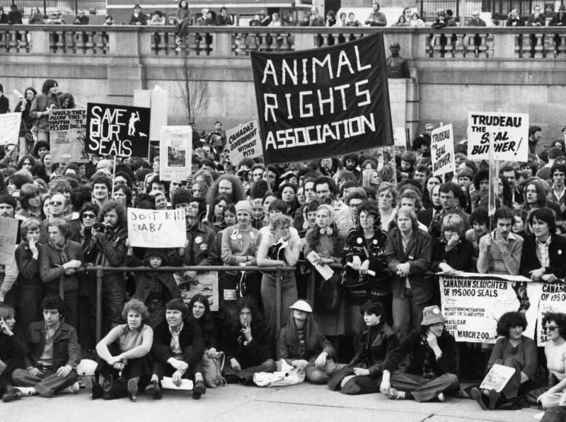 Tierrecht-Demonstration stockbild