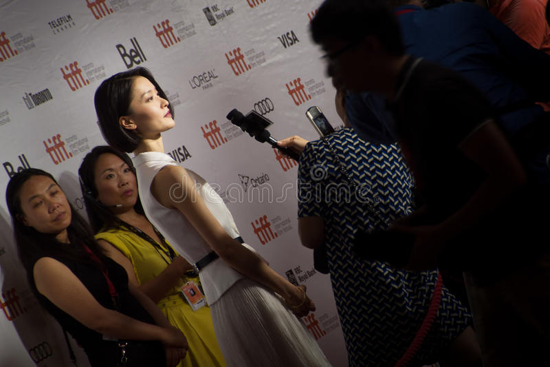 TIFF 2013年 库存照片