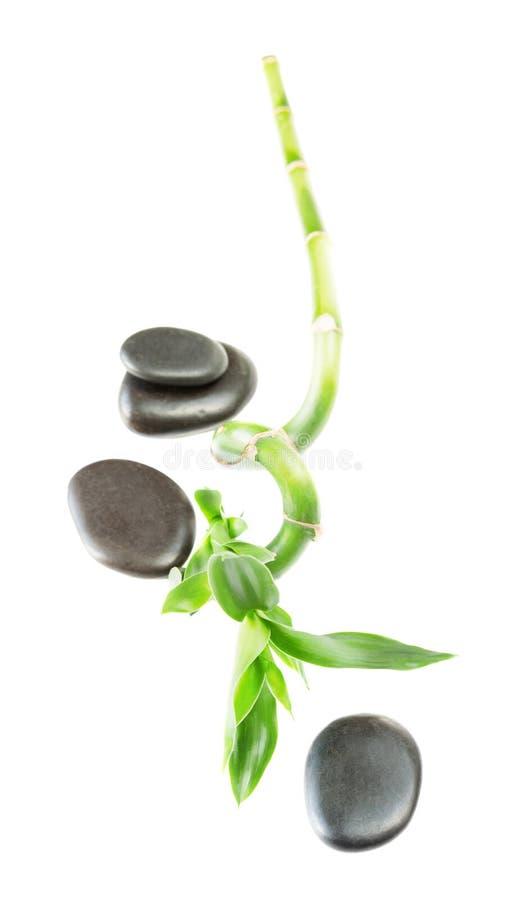 Tige en bambou et pierres noires photo stock