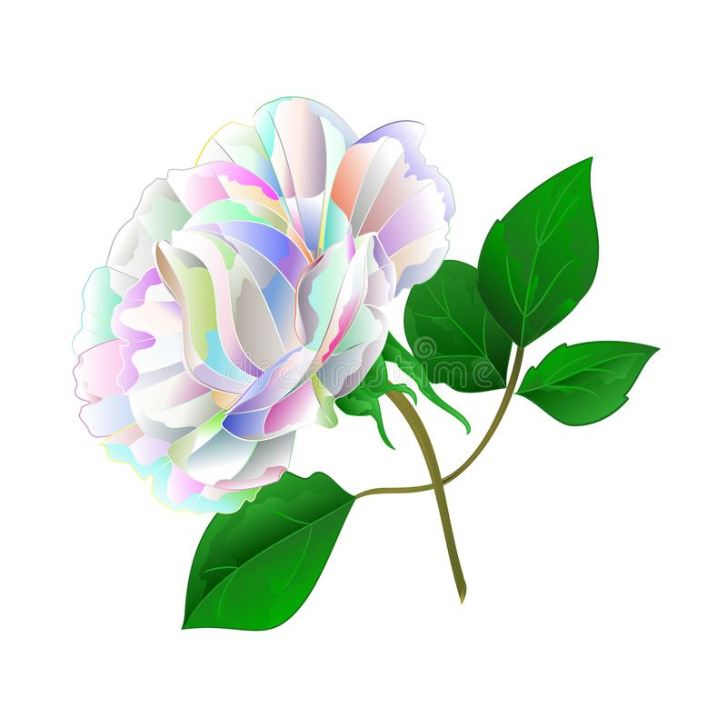 Tige et feuilles colorées multi de Rose sur une aspiration editable de main de fond de cru d'illustration blanche de vecteur illustration de vecteur