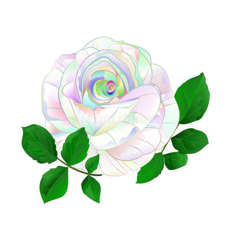 Tige simple multicolore de Rose avec le cru de feuilles sur une illustration blanche de vecteur de cru de fond illustration de vecteur