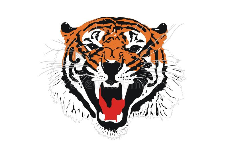 Download Tiger Royalty Free Stock Photography - Image: 15097907