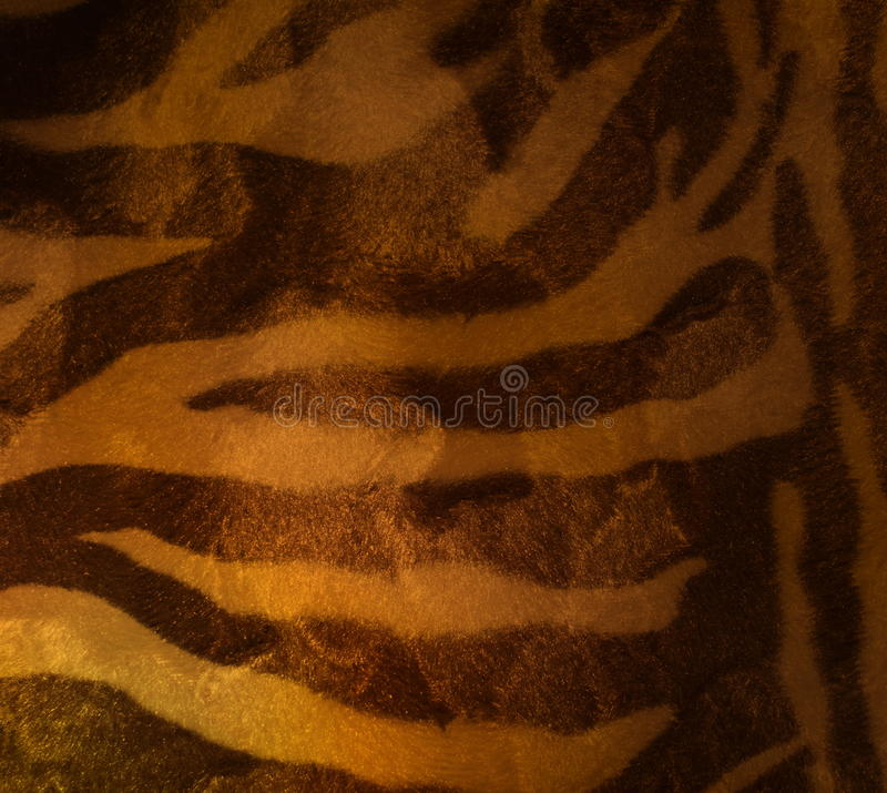 Tiger. Fur vintage of style stock photos